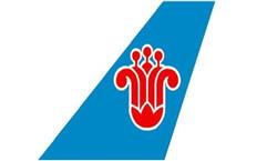 中国南方航空有限公司