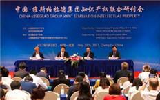 中国-维斯格拉德集团