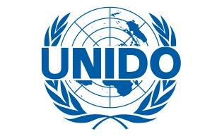 联合国工业组织