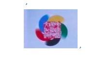中国国际友好文化节组委会