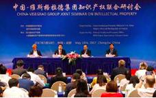 China&V4 IPRJS